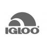 IGLOO COOLERS